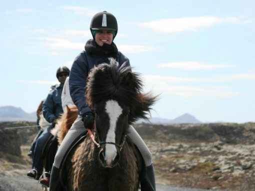 Nature Comfort Ride via Íshestar *1h riding* incl. transfer * ISK 8.800