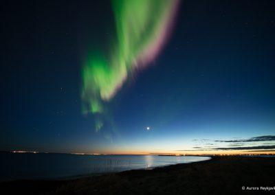 c aurora Reykjavik Alfsnes (1 of 1)