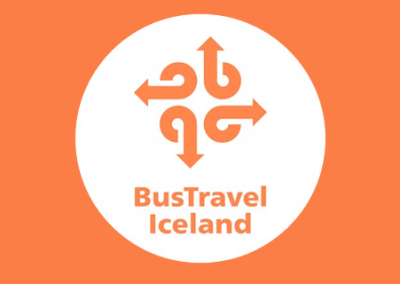 Premium Northern Lights Tour via Bustravel Iceland