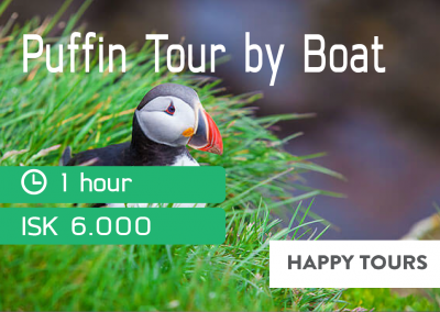 Puffin Boat Tour