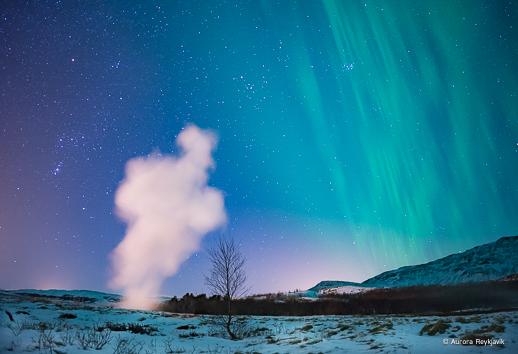 c aurora Reykjavik 2017 (10 of 31)