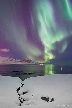 c aurora Reykjavik 2017 (11 of 31)