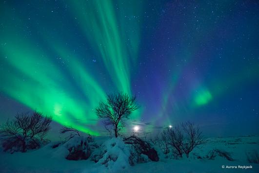 c aurora Reykjavik 2017 (12 of 31)