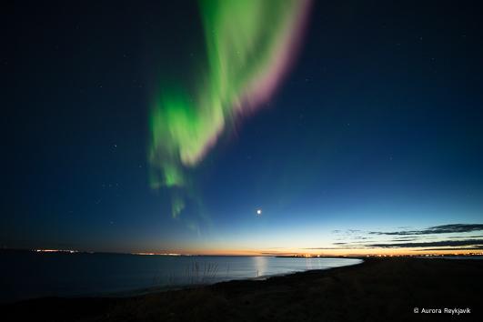 c aurora Reykjavik 2017 (22 of 31)