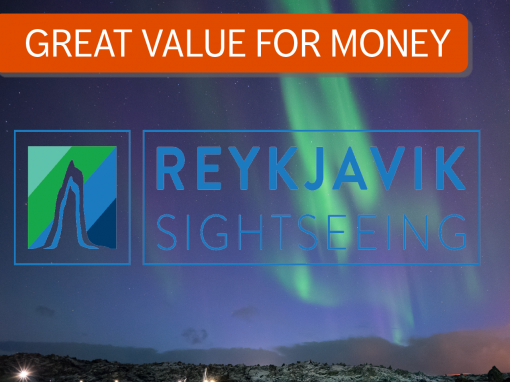 2 in 1: Northern Lights and South Shore Adventure via Reykjavik Sightseeing
