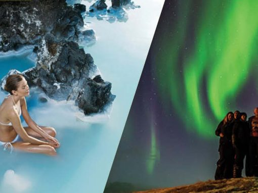 The Blue Lagoon and Northern Lights (admission incl.)